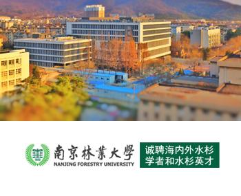 南京林业大学诚聘海内外水杉学者和水杉英才